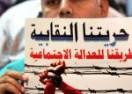 تقارير | نشاط المركز المصري في التضامن والدفاع عن حقوق المواطنين والحملات خلال عام 2013
