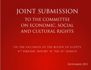 Joint Parallel Report To UN Commitee on Economic, Social & Cultural Rights