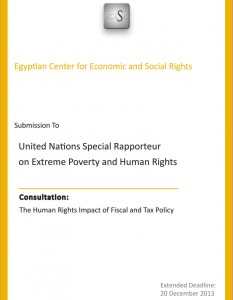 The Human Rights Impact on Fiscal and Tax Policy