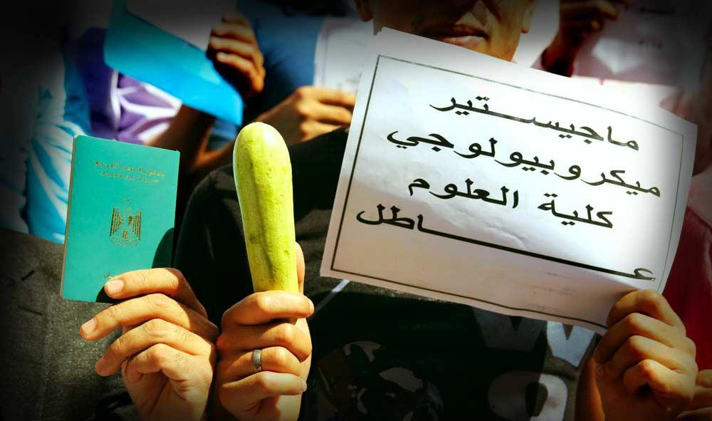 استخدام نبات الكوسة كشعار للمحسوبية والواسطة في مظاهرات حملة الماجستير والدكتوراة