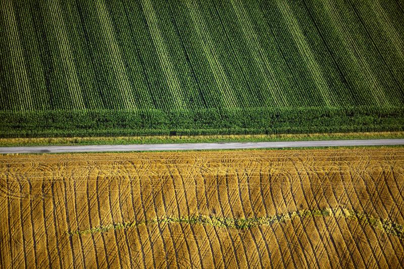 field_patterns