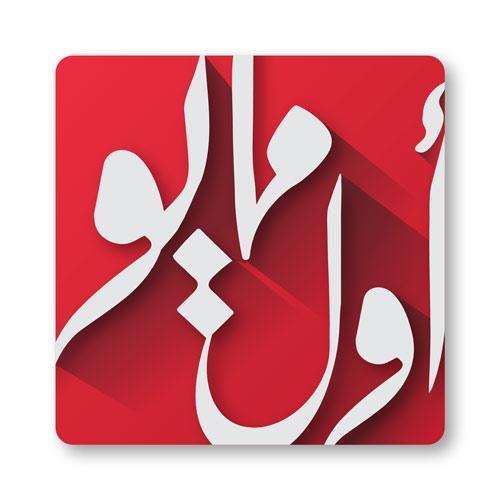 AwlMayo-Logo
